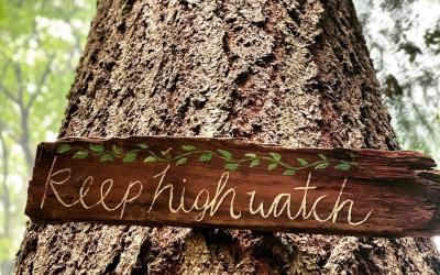 Keep High Watch